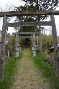 赤井神社の参道(伊勢市上野町)