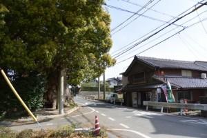 八柱神社付近(伊勢市津村町)