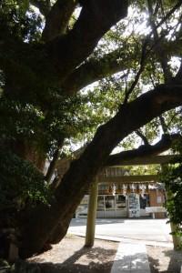 八柱神社(伊勢市津村町)