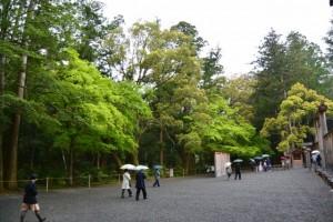 新緑の外宮(御正宮 蕃塀付近)