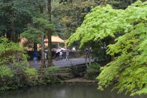 新緑の外宮(御池越しに望む風宮)