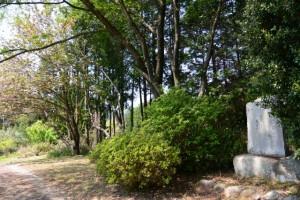 聖武天皇開宮宮阯の石柱付近に建つ歌碑(津市白山町川口)