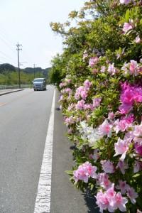 国道42号(JR参宮線 池の浦シーサイド駅〜松下駅)