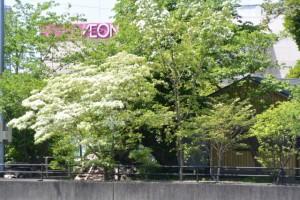 箕曲神社とララパーク(伊勢市小木町)