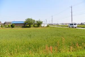 須田公民館付近(明和町馬之上)