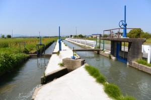 須田公民館付近の用水路(明和町馬之上)