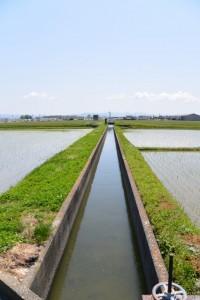 神麻績機殿神社方向へとまっすぐに続く用水路(松阪市新開町)