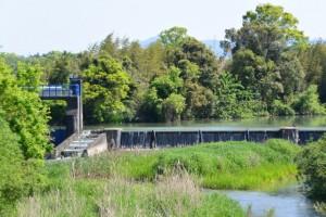 新川橋から望む祓川の上流方向
