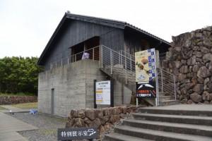 体験学習館 特別展示室(海の博物館)