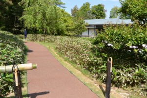 神宮美術館・庭園への入口(神宮美術館側)