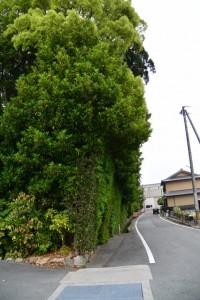 大土御祖神社(皇大神宮 摂社)