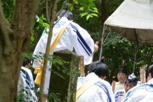 神田御田植初 船漕(大土御祖神社)