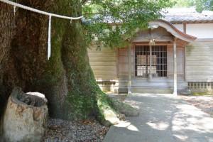 飛鳥神社(尾鷲市曽根町)
