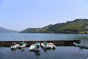 飛鳥神社付近から望む賀田湾(尾鷲市曽根町)