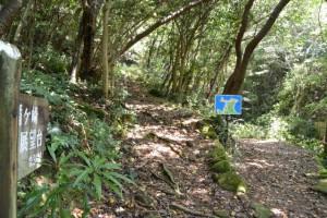 分岐付近に設置されている案内地図(楯ヶ崎遊歩道)、「楯ヶ崎展望台0.3km」