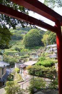徐福の宮からの風景(熊野市波田須町)