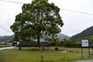 旧三木屋跡(伊勢本街道 多気宿)