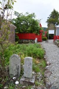 東御所跡、雪姫桜付近