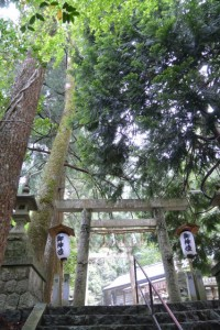 川上山若宮八幡神社(津市美杉町川上)