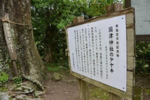 國津神社のケヤキの説明板(津市美杉町太郎生)