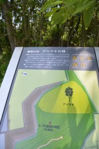 ミュージアムフィールドにあるヲノ坪遺跡B地区(未調査)(MieMu)