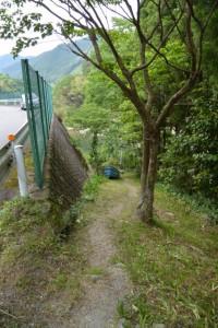 県道770号から三瀬の渡しへ(大台町下三瀬)