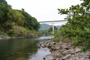 三瀬の渡し付近から見上げた紀勢自動車道の紀勢宮川橋(大台町下三瀬)