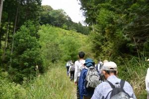 林道 上三瀬線(大台町上三瀬)