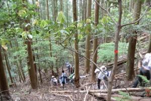 大台町 林道 上三瀬線 終点〜三瀬越