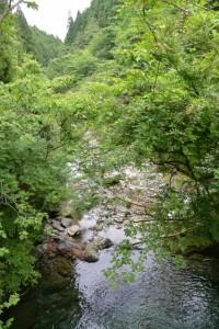 砂防ダムの上部から望む上津又川(濁川の支流)