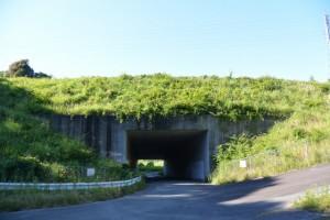 伊勢自動車道下のトンネル 「勢和多気42」付近