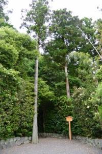 園相神社(皇大神宮摂社)