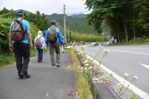 内城田大橋(宮川)〜川口交差点(県道22号)