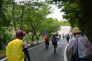 日向多目的集会所付近〜日向橋(度会町日向)