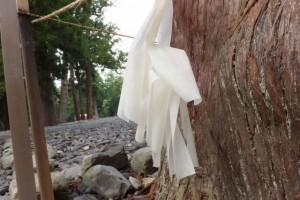 外宮の古殿地に張られているしめ縄、紙垂が二倍?