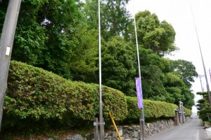 磯神社(伊勢市磯町)