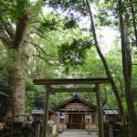 修繕中の磯神社(伊勢市磯町)