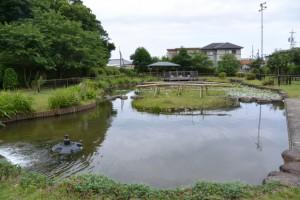 磯つつじ公園(伊勢市磯町)