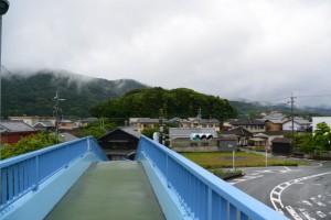 中村歩道橋から遠望する宇治山田神社の社叢、興玉の森