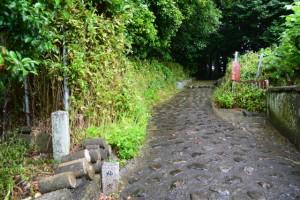 宇治山田神社(皇大神宮摂社)の参道