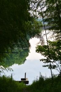 道路から望む牛尾崎池(玉城町)