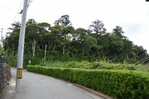 蚊野神社(皇大神宮摂社)の社叢