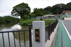 田丸城址の外堀に架かる桜橋