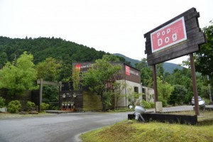 Dog hotel&cafe(サニーロード沿い)