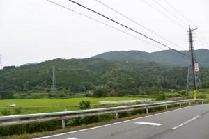 サニーロードから沼木神社方向の遠望