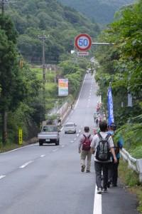 サニーロード(円座町交差点〜沼木神社付近の分岐)