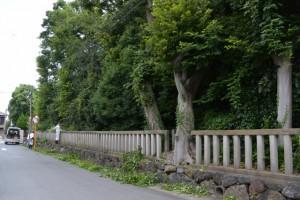 草刈り作業中(清野井庭神社)