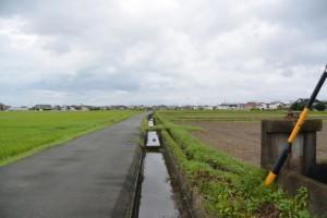 松屋製菓脇の農道を大湊方向へ