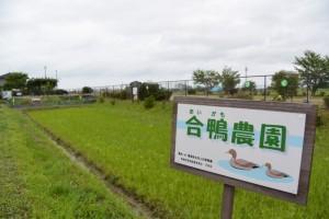 合鴨農園(伊勢市馬瀬町)