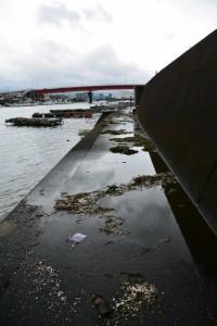 台風11号が過ぎた跡(伊勢市神社港)